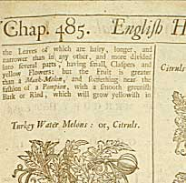 """Botanologia: The English Herbal"""