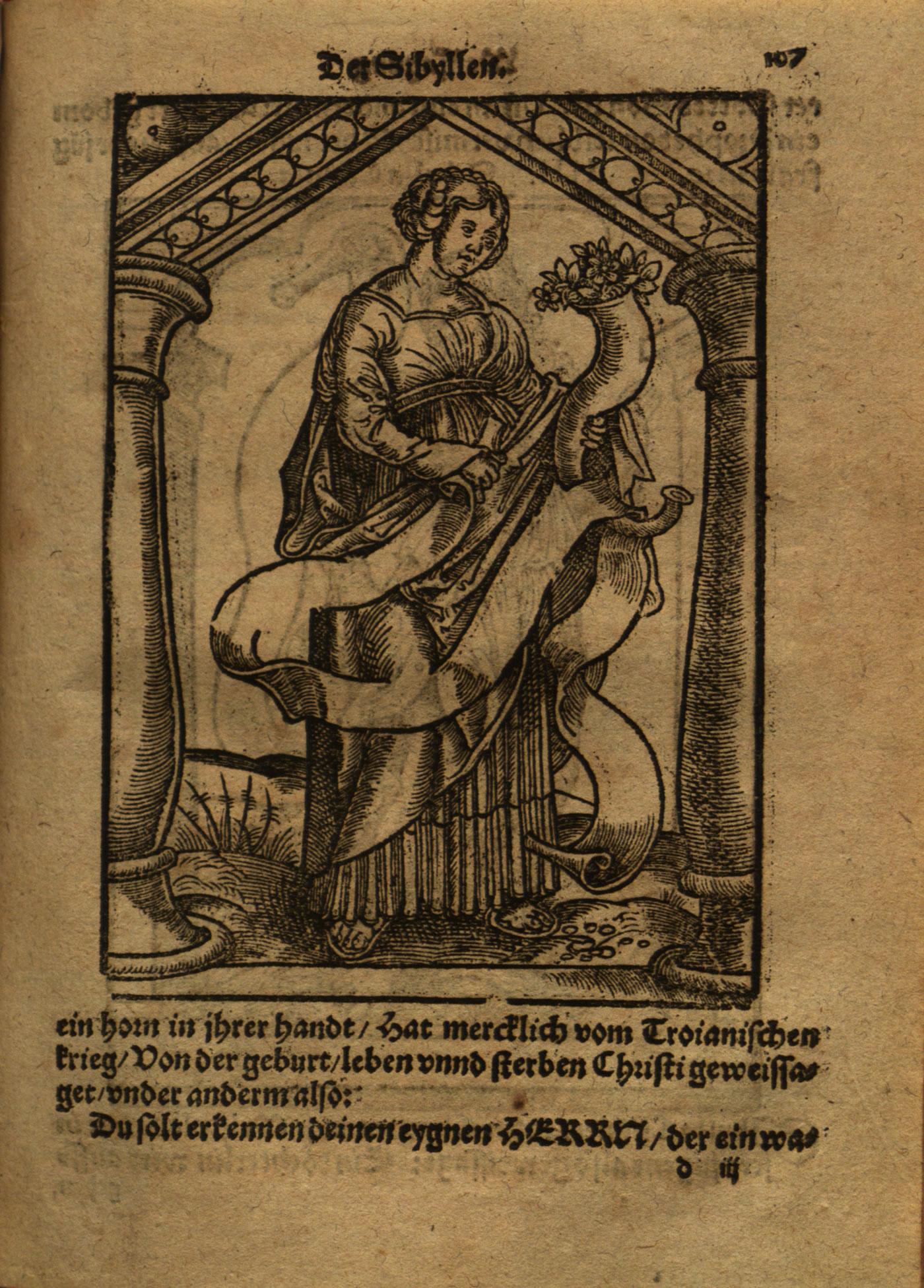 shop Anabasis of Alexander: v.