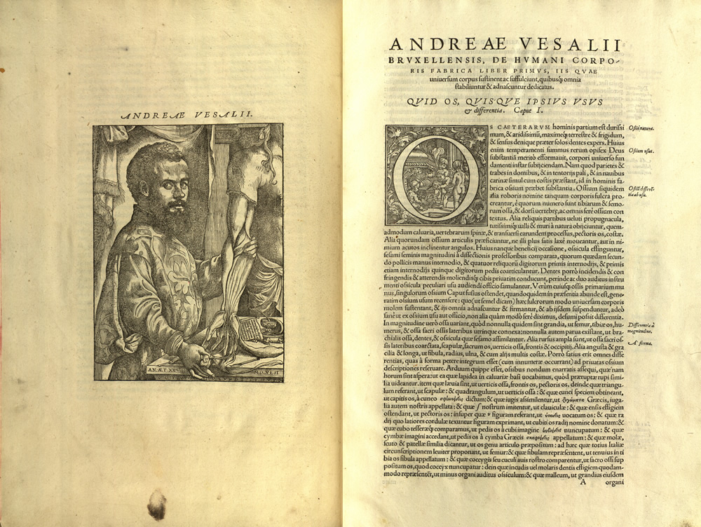 the renaissance and andreas vesalius essay Andreas vesalius a biography by dr andré toulouse of the great names in anatomy and medicine, andreas vesalius stands out as having revolutionized the way medicine was taught.